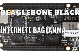 beaglebone_black_ile_internete_baglanma
