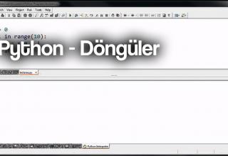 python_donguler_roboturka